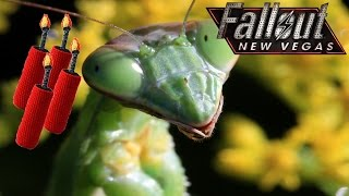 Fallout New Vegas Funny Moments Episode 2- Dead Mantis, Crippling by Dynamite, Cow Graveyard