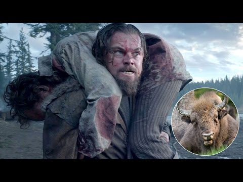 Leonardo DiCaprio - Eating bison liver like a giant hot zit bursting in mouth - www.briantophoto.com