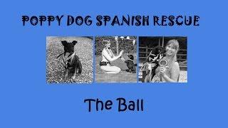 POPPY DOG SPANISH RESCUE - BALL TRICKS