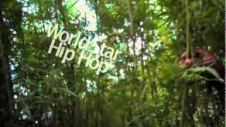 JAMAICA WEED FARM