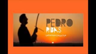 Petiço Mapa-Mundi - Pedro ribas