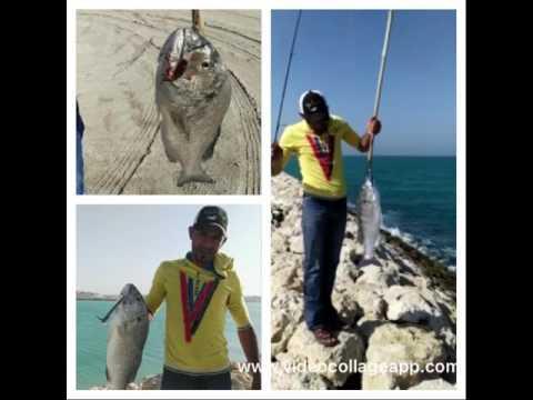 Extreme anglers bahrain
