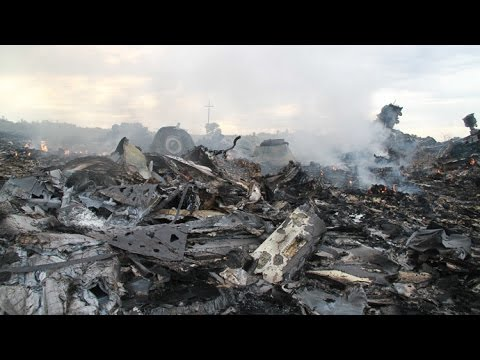 Malaysia Airlines Plane Shot Down in Ukraine