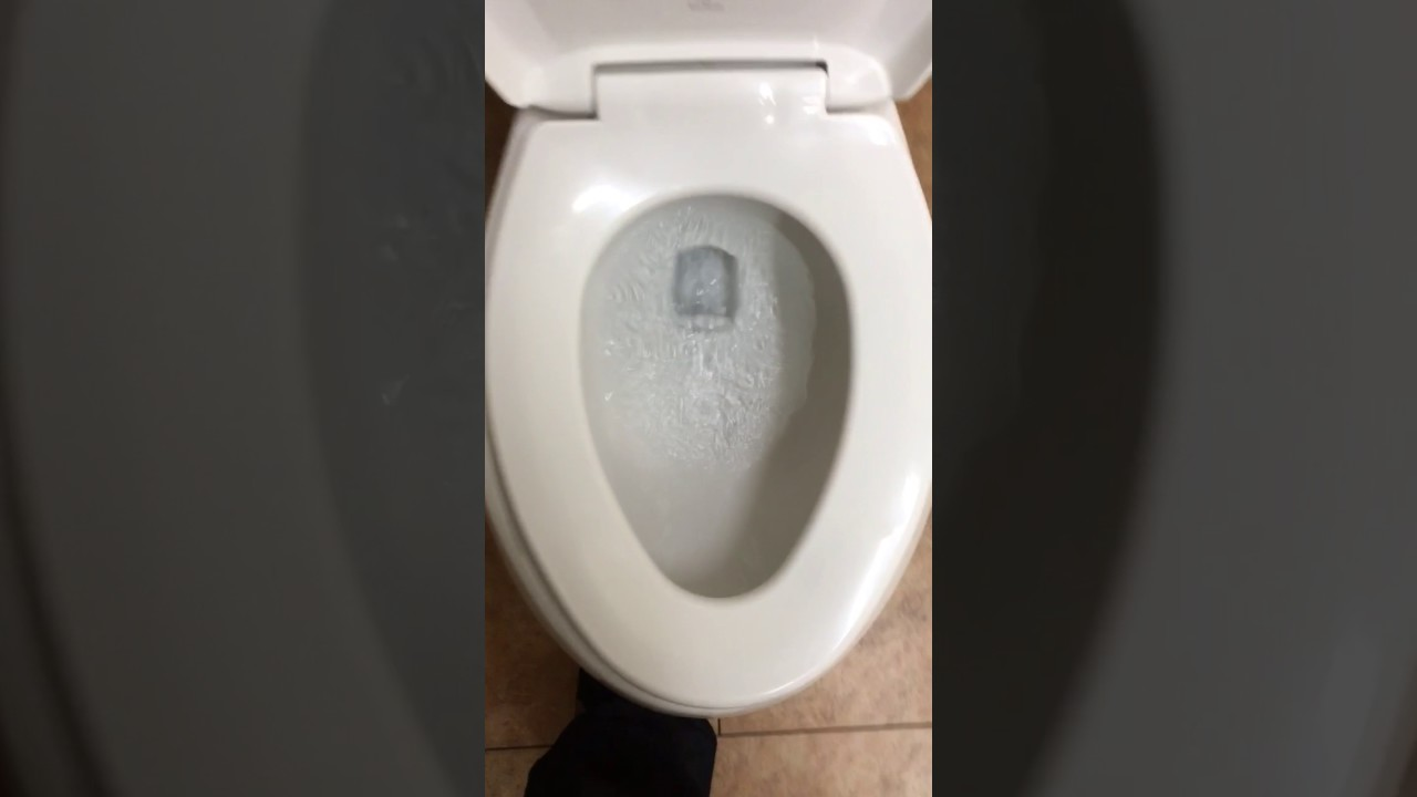i-get-more-ass-than-a-toilet-seat