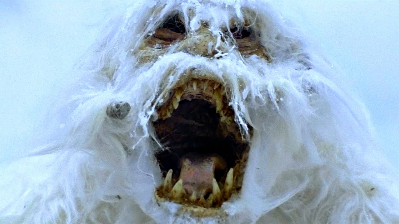 Image result for wampa
