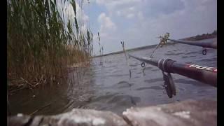 Рыбалка,р. Кодыма.Карась,плотва на поплавок
