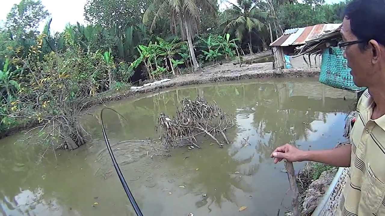 Fishing grandpa 39 s pond in vietnam youtube for Fish in vietnam