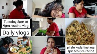 #Daily vlogsTuesday 8am to 9pm routine vlogpilalu kuda tinelaga spinach rice recipe