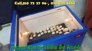 incubator,Egg,ទូភ្ញាស់ពងមាន់,ទូរភ្ញាស់,ធុងភ្ញាស់,ភ្ញាស់កូនមាន់,កសិកម្ម,កសិដ្ឋាន thumbnail