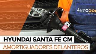 Cómo cambiar Amortiguadores delanteros en HYUNDAI SANTA FÉ CM [INSTRUCCIÓN]
