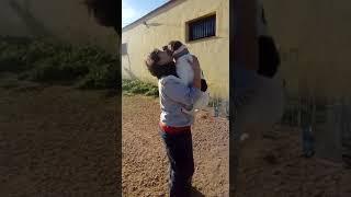 Koski Video 1