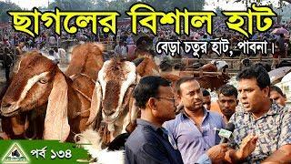 KrishiChitra 134, Cow& Goat Hat,পাবনা বেড়া চতুর হাট।গাভী গরু,মহিষ,ষাড় গরু, বকনা ও ছাগলের বিশাল হাট ।