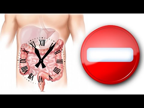 Через сколько пища попадает в кишечник