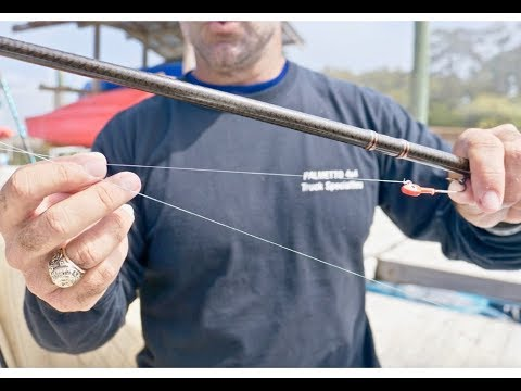 3 Best Inshore Fishing Rigs And Bait From Pro Angler - Redfish, Trout, And Flounder