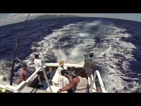 Akura Lands Record 380kg Marlin - Incredible Story