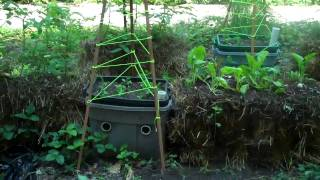 Self-watering Planter & Straw Bale Garden 2011