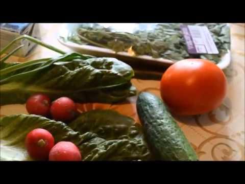 Французская диета Пьера Дюкана: рецепты, меню, отзывы, правила