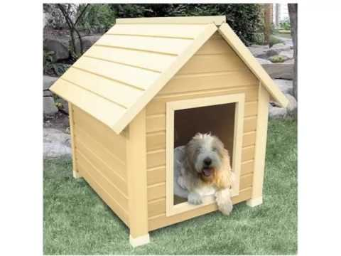 Ideas For Dog House Designs on luxury homes for dogs, interior design for dogs, architecture for dogs, garage for dogs, painting for dogs, furniture for dogs, swimming pool for dogs, beach house for dogs, dream house for dogs,