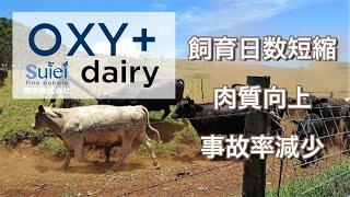 OXY+ dairy 畜産用飲用酸素水生成装置