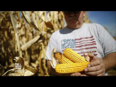 PBS NewsHour: Farm-fresh healthy food doesn't have to be too pricey or pretty, says this chef