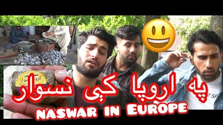 PASHTHO NASWAR FUNNY VIDEO | AFGHAN DESI BOYS
