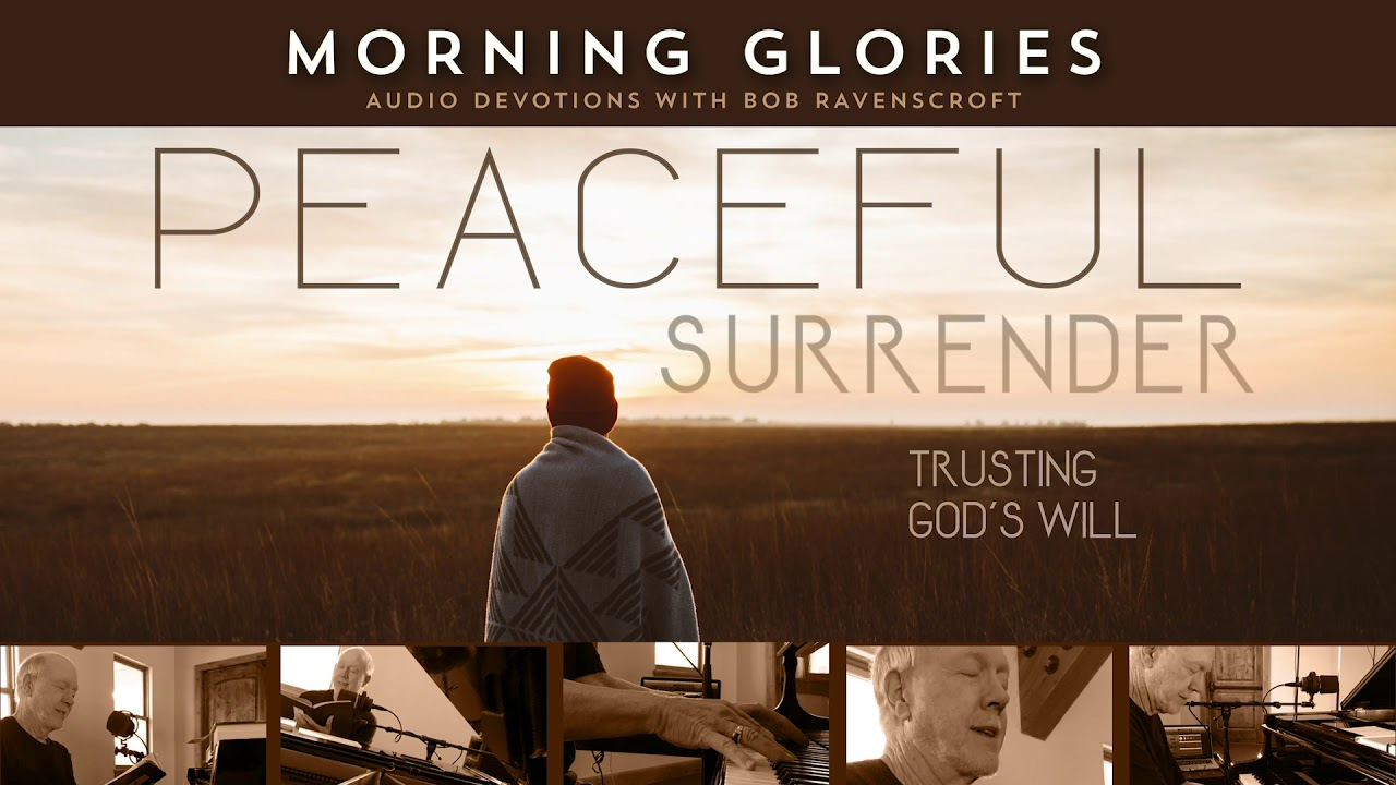 Peaceful Surrender - Morning Glories