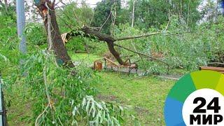 Ураган в Астане повалил краны и прокатил по ВПП самолет - МИР 24