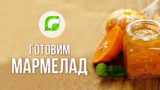 Анна Рудакова готовит свой фирменный мармелад
