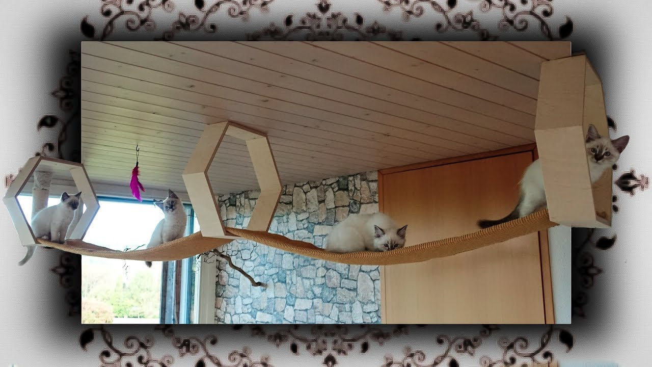 diy decken laufsteg f r katzen cats heaven catwalk youtube. Black Bedroom Furniture Sets. Home Design Ideas