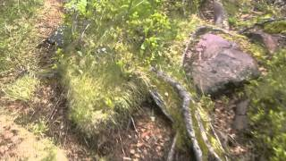 Survival -Training - Überlebenstraining - Outdoor -- Wildnis in Schweden
