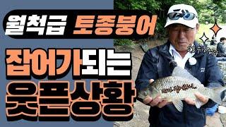 월척 토종붕어가 잡어가 되는 순간 ( feat.두창지리벤지)