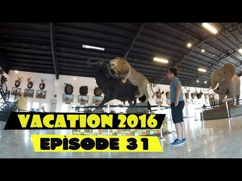 Baluarte Zoo Ilocos Sur Travel Vlog