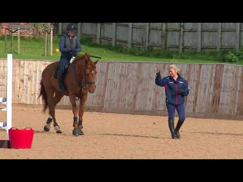 Young Horse Showjumping Training Part 7