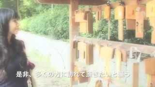 パワースポット 愛媛県大三島「大山祇神社」