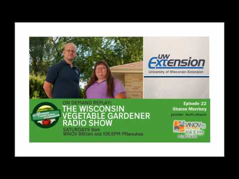 (audio only) Essential Oils, Powdery Mildew The Wisconsin Vegetable Gardener radio show #23