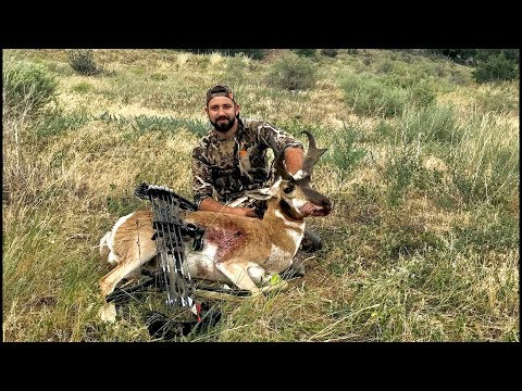 (Pre Prsüt) Colorado Archery Pronghorn