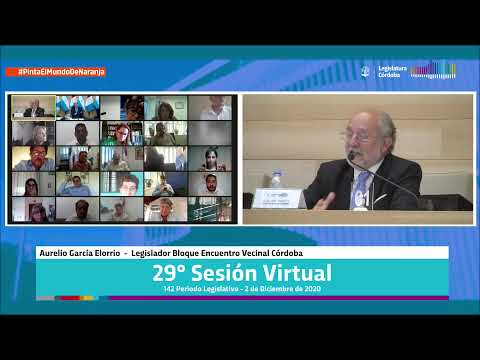 Vigésima Novena Sesión Virtual - 142 Período Legislativo