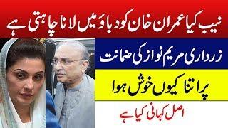 Mayam Nawaz ki Bail or Asif Zardari ki Khushia | Badmashia | Zk Official