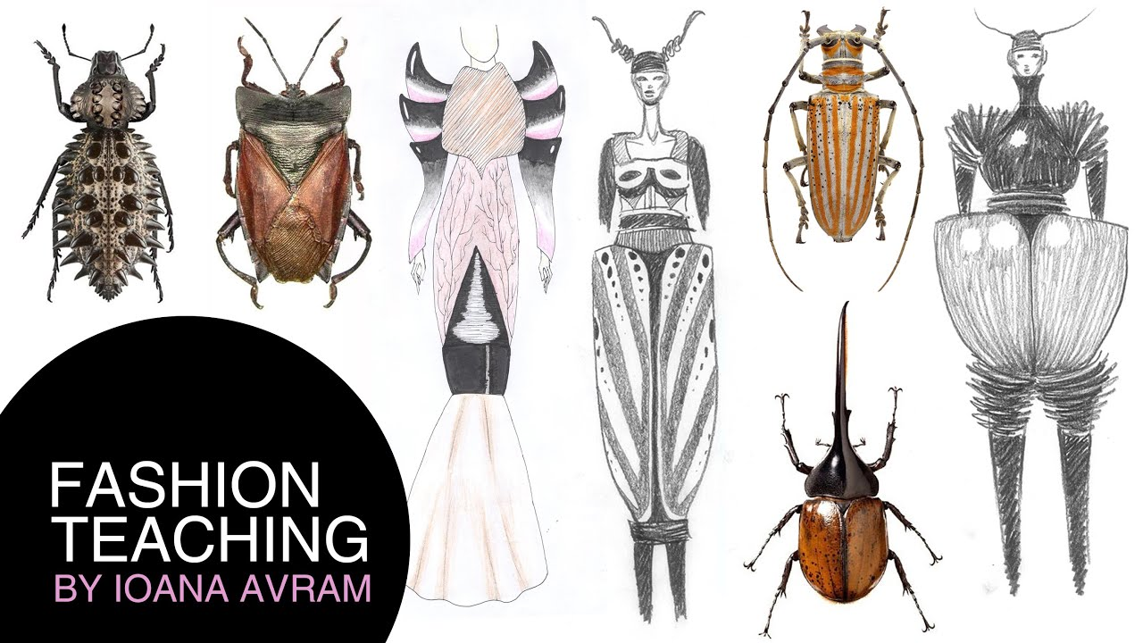 How To Create Your Own Fashion Collection Inspired By Insects Youtube
