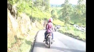 Pesona Kebun Teh Kemuning Di Desa Gumeng Kecamatan Jenawi, Karanganyar