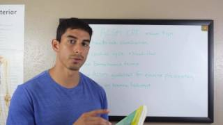 Tips for Studying for the ACSM Certified Personal Trainer Exam