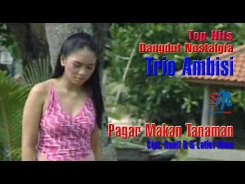 Trio Ambisi - Pagar Makan Tanaman (Official Music Video)
