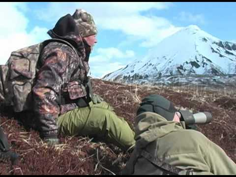 SOA CLASSIC Peninsula Brown Bear Hunt