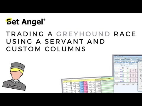 Bet Angel - Trading a Greyhound race using a Servant and custom columns