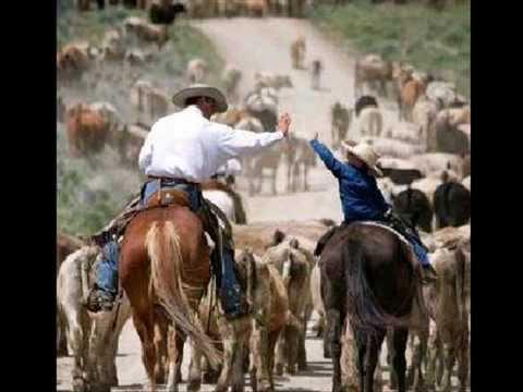 Eduardo mendoza toro recoliao