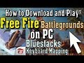 How to Play Free Fire Battlegrounds on PC Controls With Bluestacks Emulator