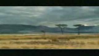 Afryka.3gp