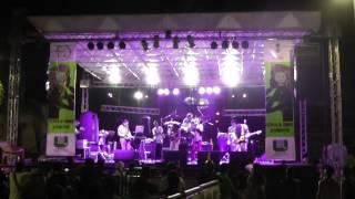 Colectro | El bacán elegante - Tumbaga Festival 2014