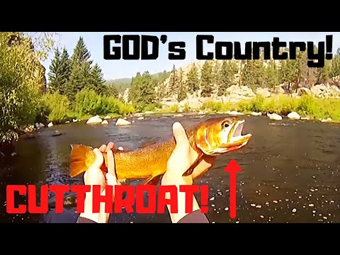 Fly Fishing Colorado ~ The Platte River ~ August 2015