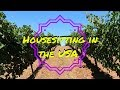 HOUSESITTING IN SALEM, OREGON | USA TRAVEL VLOG